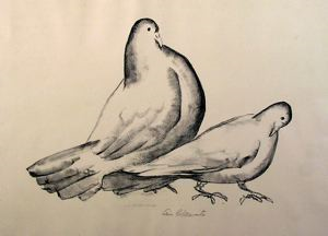 Image of Pigeons (Cock and Hen)