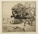 Image of Fig Tree, Ile-aux-Moines