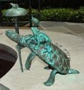 Image of The Till Fountain: Turtle with Umbrella